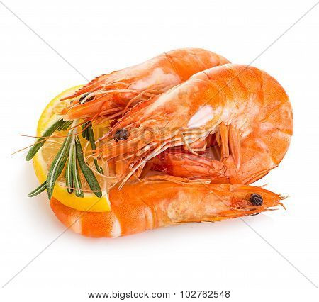 Tiger Shrimps With Lemon Slice And Rosemary. Prawns With Lemon Slice And Rosemary Isolated On A Whit