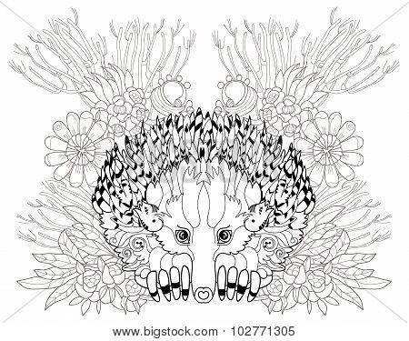 Hand drawn animal  Echidna.
