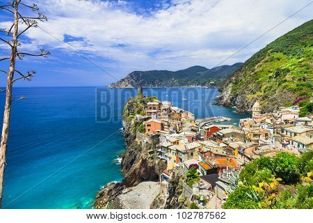 Vernazza- one of the most beautiful villages of Italy,