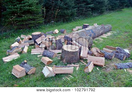 Cutting & Splitting Wood