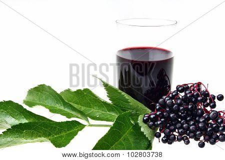 Bunch Of Fresh Elderberry