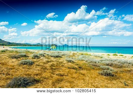 Wild Beach In Front Of A Beautiful Sea