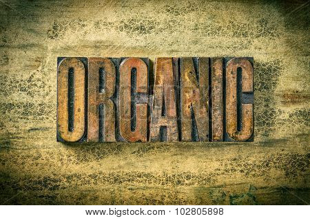 Antique Letterpress Wood Type Printing Blocks - Organic
