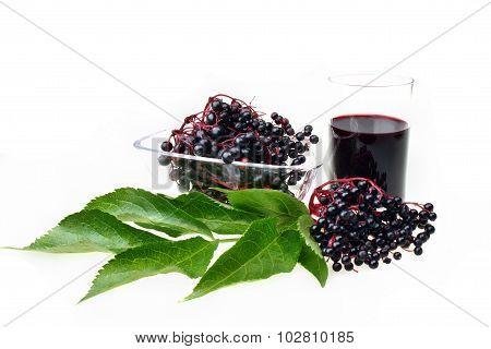 Bunch Of Fresh Elderberries
