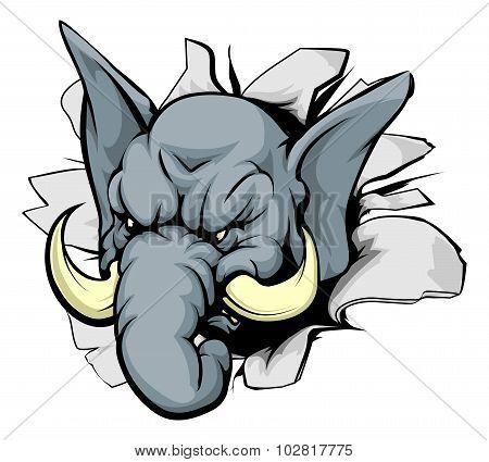 Elephant Breakthrough