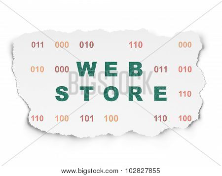 Web development concept: Web Store on Torn Paper background