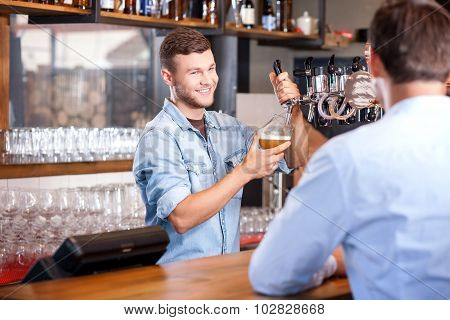 Attractive young bartender is working in bar