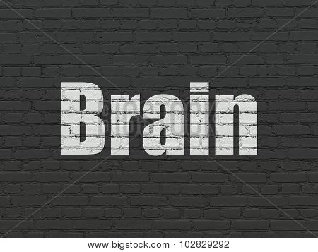 Medicine concept: Brain on wall background
