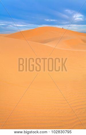 Sandy Desert