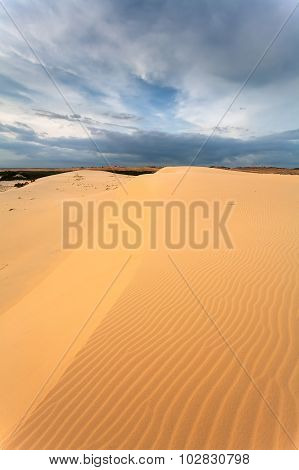 Desert With Yellow Sand
