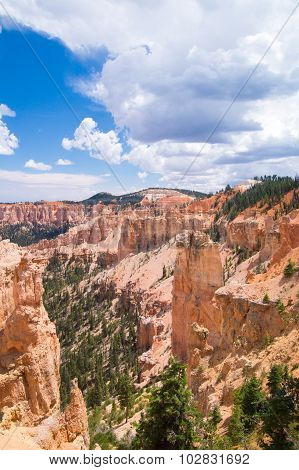 Sandstone Canyons At Bryce National Park
