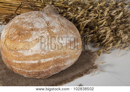 White loaf of homemade bread on a table with rye  and oats spikelets on the background .