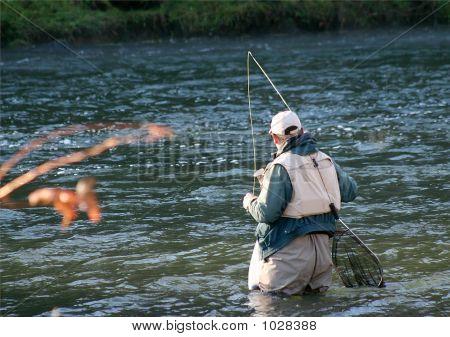 Fly Fishing 32