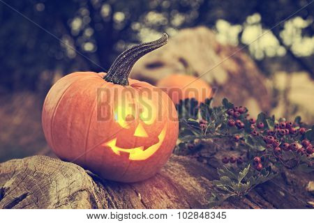 Halloween pumpkin sitting on log