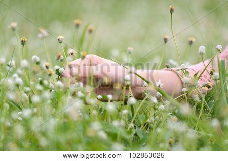 Woman Hand Touch Litter Flower