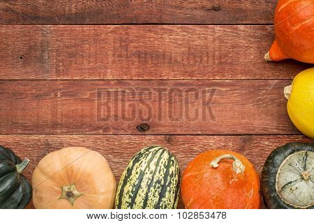 red barn wood background with framed b y a variety of winter squash fruits