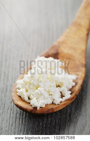 cottage cheese in olive wood spoon