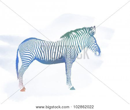 Digital Painting of Colorful Zebra