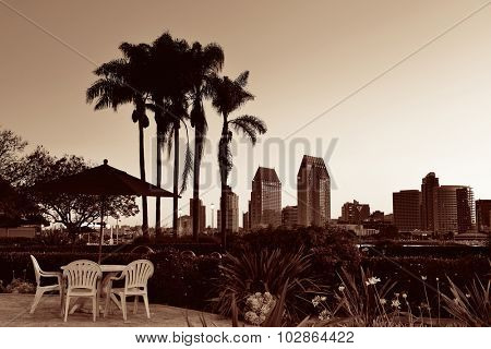 San Diego dawn in early morning with palm tree silhouette in BW.