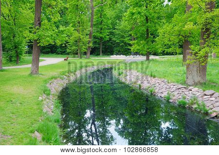 Stream In The Summer Park