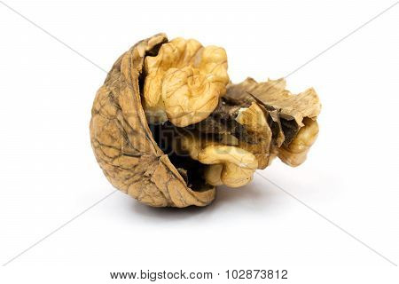 Walnut Cracked