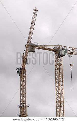 Cranes On A White Sky Background