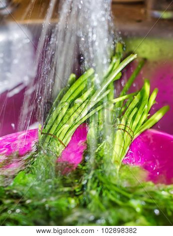 Wash The Parsley, Dill Shower, Kitchen, Dishes, Wash The Greens
