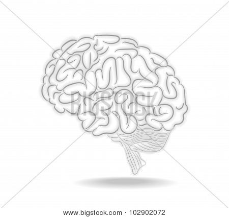 Thoughts Brain Abstract Illustration