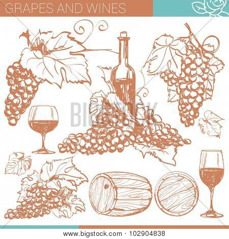 Vector winery design elements set.
