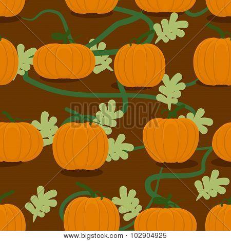 Pumpkin Farm Seamless Patter. Plantation Of Pumpkins Background. Grow Pumpkins On Bed. Natural Farm
