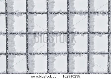 Hoar Frost on Wire Fence