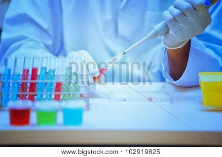 Professional Pipetting Solution Into The Genetic Test
