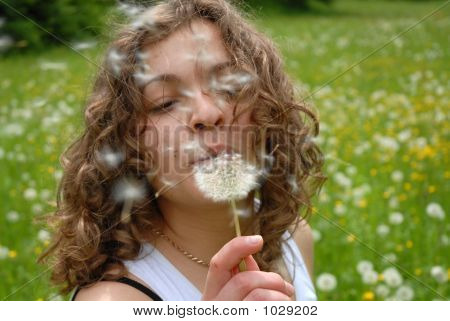 Girl Is Blowing On Dandelion