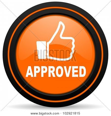 approved orange glossy web icon on white background