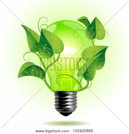 Ecology light bulb with leaves.  Green energy concept