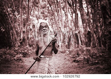 Rubber Plantation Worker Growth Green Occupation Concept