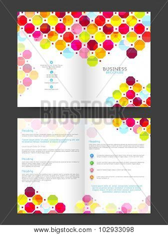 Colorful abstract design decorated, Professional Brochure, Template or Flyer for your Business.