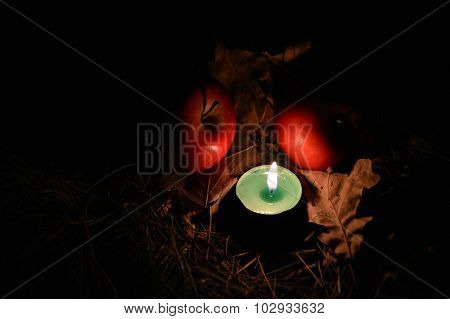 Burning candle among autumn fallen leaves and red apples in the night, beautiful intimate light