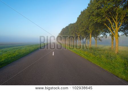 Road through a hazy landscape at sunrise