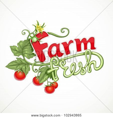 Farm Fresh Lettering With Tomato Sprout With Flower Isolated On White Background