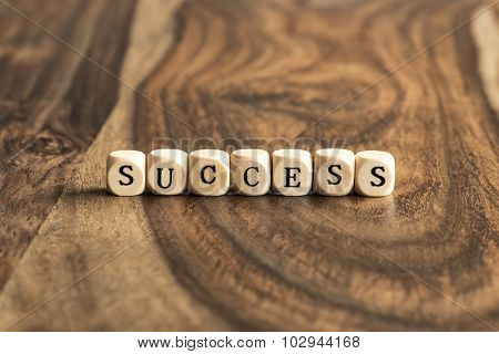 Word Success On Wooden Cubes
