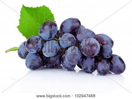 Fresh Wet Blue Grapes With Green Leaf Isolated On White Background