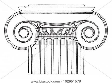 Ionic capital of the Temple of Wingless Victory, vintage engraved illustration.