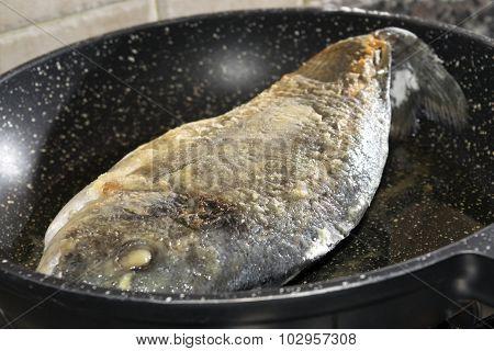 Sea Bream in Pan