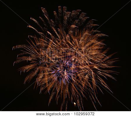 Artistic fireworks. Fireworks festival. Fireworks fan. Explode. New Year celebration. 4 July