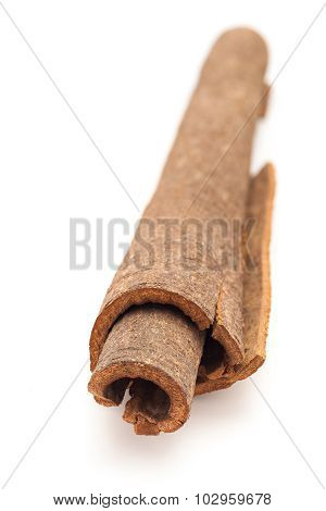 Close up of Cinnamon stick.