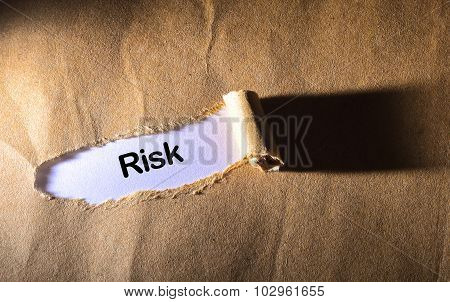 Torn Paper With Word Risk