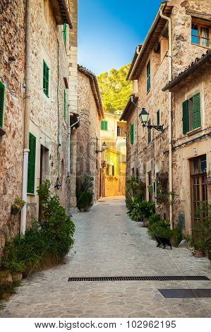 Narrow Cozy Street In Valldemossa