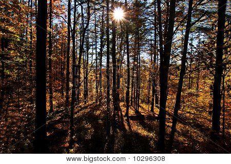 Pennsylvania Autumn Scene