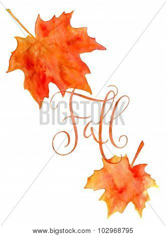 Watercolor Maple Leaves And Fall Word